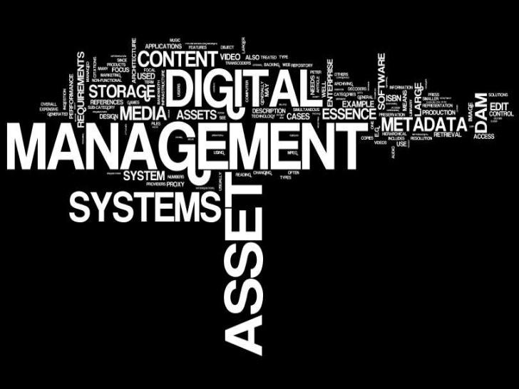 Basics of Digital Asset Management